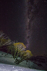 Snowy Stars (maritahills) Tags: stars milkyway snow nationalpark night nightsky winter cold nikon astrophotography backcountry skiing