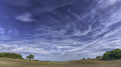 Big Sky (Durham George) Tags: sky clouds soil dirt cly trees forest