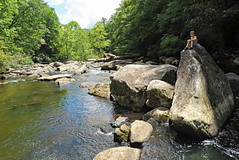 Rock Star (FAIRFIELDFAMILY) Tags: saluda nc north carolina south river little bradley bradly falls rainbow turtle carson jason taylor grant rock water michelle family swim swimming log tree forest father son mother fairfield winnsboro sc polk county flat climb climbing hiking walking child young boy man pretty bravard cashiers jumping jump coca cola sign antique architecture store diner