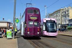 719 + 016 (PD3.) Tags: blackpool fleetwood fylde lancashire transport bus buses trams tram north pier central south pleasure beach pcv psv talbot square heritage