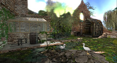Ruined garden: a place for ducks (Sheila Yoshikawa) Tags: secondlife plaaka virtualworlds summer sunflowers gardens ruins september 2018