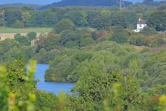 _MG_0206 (Yorkshire Pics) Tags: 0909 09092018 9thseptember 9thseptember2018 castleford fairburnings rspbfairburnings