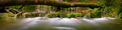 Wasser im Fluss (Jensens PhotoGraphy) Tags: deutschland germany badenwürttemberg landschaft landscape langzeitbelichtung wasser water bach fluss farbig grün green