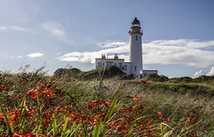 Turnberry Lighthouse, Scotland (Legoff1 (Craig Hutton)) Tags: scotland westcoast sea turnberry donaldtrump trumptower lighthouse island cenotaph beach sunset cows trees rocks flowers grass sky butterfly