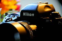 nikon f5 (bluebird87) Tags: camera nikon f5 d600 telescope celestron c6