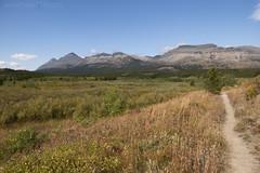 Firebrand Pass trail (hike734) Tags: