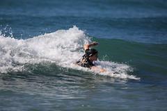2018.09.15.09.15.22-WhompOffAustralia-672 (www.davidmolloyphotography.com) Tags: australia newsouthwales sydney cronulla bodysurf bodysurfer bodysurfing beach whompoffaustralia