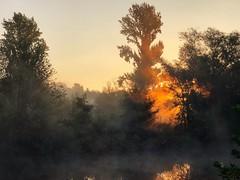 Sonnenaufgang an der Ruhr (generalstussner) Tags: beautiful sun sonne landscape landschaft nebel sonnenaufgang ruhrgebiet ruhr