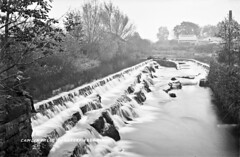 Camlin Falls, Longford, Co. Longford (National Library of Ireland on The Commons) Tags: robertfrench williamlawrence lawrencecollection lawrencephotographicstudio thelawrencephotographcollection glassnegative nationallibraryofireland camlinwaterfalls camlin countylongford ireland longford weir falls camlinriver rivercamlin cutwater sluice mill sawmill cornmill camlinfalls locationidentified fishladder boy