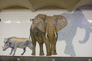 81ST Street Subway
