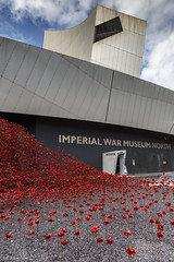 Wave II (andyrousephotography) Tags: salfordquays imperialwarmuseumnorth iwmn poppies wave weepingwindow sculptures ceramics handmade paulcummins tompiper firstworldwar ww1 centenary