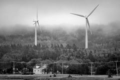 Éoliennes en Gaspésie (Luc Jacob) Tags: gaspésie lieux vacance vacances villes voyage voyages