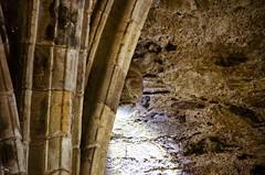 Il Castello di Ferns (Irlanda) - Ferns Castle (Ireland) (giannizigante) Tags: dublino enniscorthy irlanda