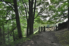 Footpath Gate (Bri_J) Tags: stanageedge peakdistrict nationalpark hathersage derbyshire uk countryside hdr nikon d7200 path trees gate