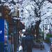 Shibuya Sakura - Tokyo, Japan