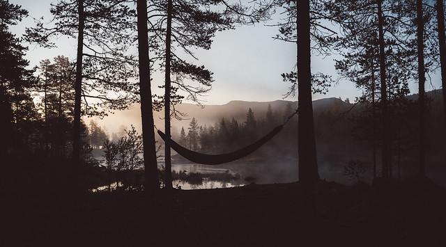 Magic Morning