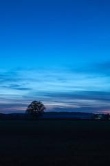 Nach Sonnenuntergang (Cornelia1989) Tags: tamron deutschland landschaft nature sonnenuntergang bayern natur clouds bäume blue baum blauestunden sonnenaufgang oberbayern blau königsdorf canon70d farben tree sky wolken himmel