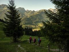 La Gruyère - Jaun / Ref.02338 (FRIBOURG REGION) Tags: suisse switzerland schweiz fribourgregion fribourgrégion lagruyère jaun grandtourdesvanils été sommer summer préalpes voralpen prealps alpes alpen alps montagne mountains berge wandern hiking randonnée sky himmel ciel freiburg ch