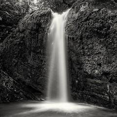 Extreme Contrast (Eddie La Mole) Tags: elyunquenationalforest juandiegotrail waterfall rainforest tropical water rocks jungle bw balckandwhite bronicags1 zenzanonpg50 fujiacros