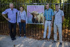 """Expo photos """"Les Souchard"""" (Pierre ESTEFFE Photo d'Art) Tags: expo exposition photo exterieur vache ruminent chambonlaforêt loiret45 france"""