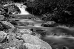 Fiume Caffaro (Nicola Corneo) Tags: caffaro river nature rocks water longexposure trees bushes wood waterfall breno brescia italy