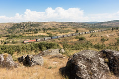 Medway Internacional nº 42800 em Trajinha (João Pagaimo) Tags: medway linhadabeiraalta 4700 portugal railway ferrovia freight mercadorias megacombi ikea