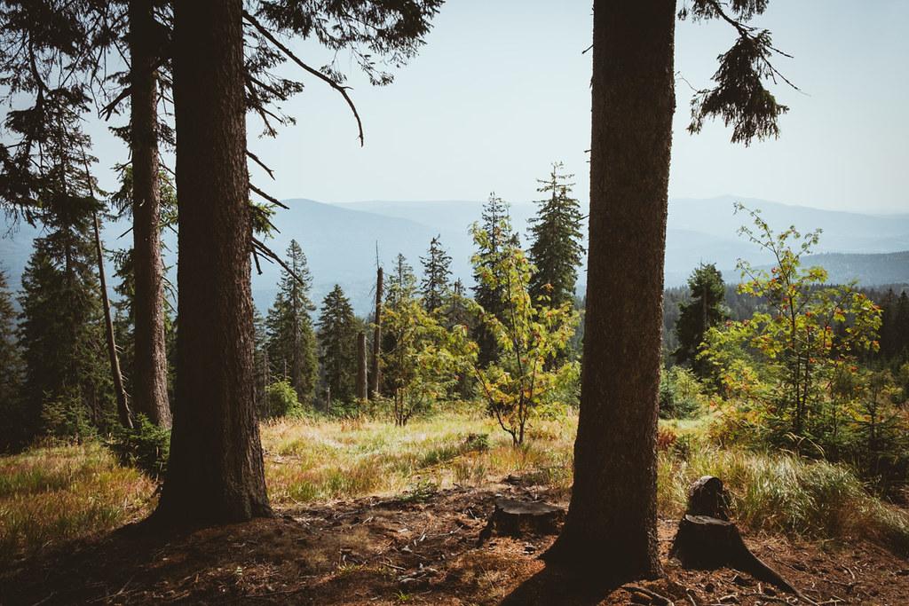 single wanderurlaub bayern