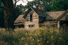 Since Your Departure (Pedalhead'71) Tags: abandoned desert easternwashington farmhouse homestead house palouse prairie rural washington whitmancounty