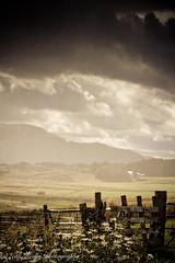 Highland Rain (broadswordcallingdannyboy) Tags: laggan highlands scotland cairngorms wilderness eos7d light canon copyrightleonreillyphotography donotcopy leonreilly eveninglight spey scottishlandscape beautifulscotland mood atmosphere nature mountains hills ben 70200mm zoomlens ef70200mmf4lisusm is f4l rain weather wet nationalpark