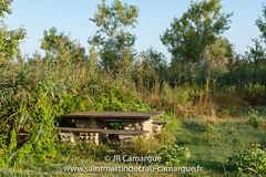 JRCamargue-7.jpg (JRCamargue) Tags: leica table repos banc