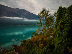 Morning Mood on the Green Lake (cs_one) Tags: alpine alps atmosphere atmospheric bern bernese berneseoberland boats brienz brienzersee calm calmwaters clouds colorful daylight destination firstlight fog foggy forest green highlands impressive interlaken lake lakeview lakefront lakeside lakesidevillage landscape leisure mist mood morning mountain mountainlake mountains natural nature oberland outdoors panorama panoramic peacefulscene picturesque range recreation reflection romanticlandscape scenery scenic schweiz season shore sight sky suisse swiss swissmountains switzerland tourism travel traveldestinations trees turquoise vacation vacations view water waterfront