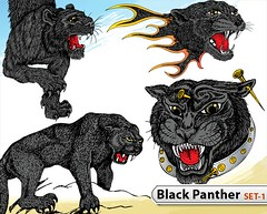 Black Panther Vector -Set-1 (stockgraphicdesigns) Tags: animal beast black cat drawing forest freehand handdrawn head hunter jungle mammals panther predator puma tattoo whisker wild wildlife
