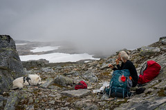 Lunch in the clouds (hanschristian_nielsen) Tags: norge vandreferie trollheimen hiking summer norway stone rock dog animal samyoed people lunch break fog cloud snow rucksack