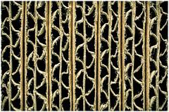 Textura (mvnfotos) Tags: macro macrofriday textura texture cardboardboxes