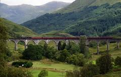 Jacobite Train (Hogward's Express) (Suzanne's stream) Tags: jacobite steam train dampflok viaduct harrypotter movie film glenfinnan scotland schottland
