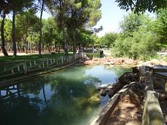estanques en Parque Alces Alcazar de San Juan Ciudad Real 04 (Rafael Gomez - http://micamara.es) Tags: estanques en parque alces alcazar de san juan ciudad real