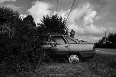 Abri naturel. (steflgs) Tags: urbex rurex abandoned car bnw noiretblanc