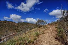 Trilha da subida (mcvmjr1971) Tags: vermelho parque estadual da serra do papagaio baependi minas gerais brasil pouso mãe douro trilha para o pico chorão nikon d7000 mmoraes viagem rural 2018