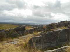 DSCN5724 (norwin_galdiar) Tags: bretagne brittany breizh finistere monts darrée nature landscape paysage