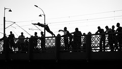 """I believe, I can fly"" / the start of a very harsh descent (Özgür Gürgey) Tags: 169 2018 24120mm bw d750 galatabridge goldenhorn haliç nikon architecture bridge highkey jump people silhouettes street istanbul"
