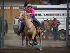 0X0A9792.CR2-001 (Elaine Taschuk) Tags: nicola valley rodeo cowboy horse bull bronco wrestling equine merritt cowgirl bareback steer saddle bronc tiedown roping ladies barrel racing team riding rider cpra pro people