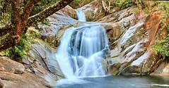 Josephine Falls (nataliehampel) Tags: landscape canon longexposure tree water natural nature slide qld aus australia queensland waterfall