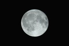 Full Moon (Andriy Golovnya (redscorp)) Tags: full moon fullmoon beautiful night sky