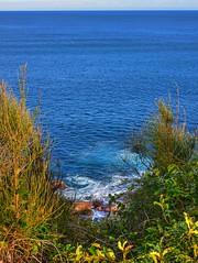 Vista (elphweb) Tags: hdr highdynamicrange nsw australia coast coastal sea ocean water