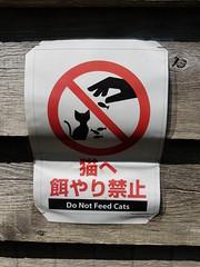 Do not Feed the Cats (Lakuda-san) Tags: japon chat volcan montagne hokkaido rishiri rishirifuji interdiction japan