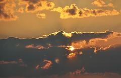 Behind the clouds....2-9-18 (wilma HW61) Tags: zonsopkomst sunrise sunlight zonlicht leverdusoleil solopgang sonnenaufgang alba ochtendstond ochtengloren ochtendzon ochtendgloren morningglory clouds wolken sky zomer été summer sommer natuur nature natur naturaleza nikond90 nederland niederlande netherlands holland holanda paysbas paesibassi paísesbajos europa europe outdoor wilmahw61 wilmawesterhoud wow