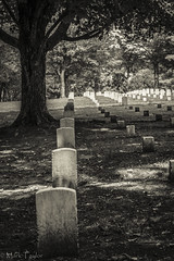 Under the oak I lay myself to sleep (*Ranger*) Tags: nikond3300 nationalbattlefield battlefield stonesriver civilwar graveyard blackandwhite bw history tennessee usa monochrome