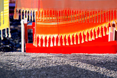 Tranquilli e asciutti (meghimeg) Tags: 2018 santamargherita asciugamani tovels spiaggia beach sole sun arancione orange