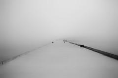 Foggy Morning (ferreirarui1971) Tags: aveiro bw minimalism