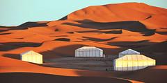 Sahara Desert Tour And Adventure (morocco1423) Tags: sahara desert tour morocco holidays marrakech